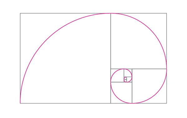złoty podział spirala